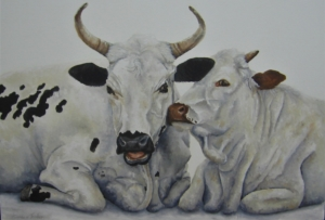 amelda van tonder, amelda, amelda van tonder art, amelda van tonder art for sale, crouse art gallery, art for sale, art gallery, art, old masters for sale