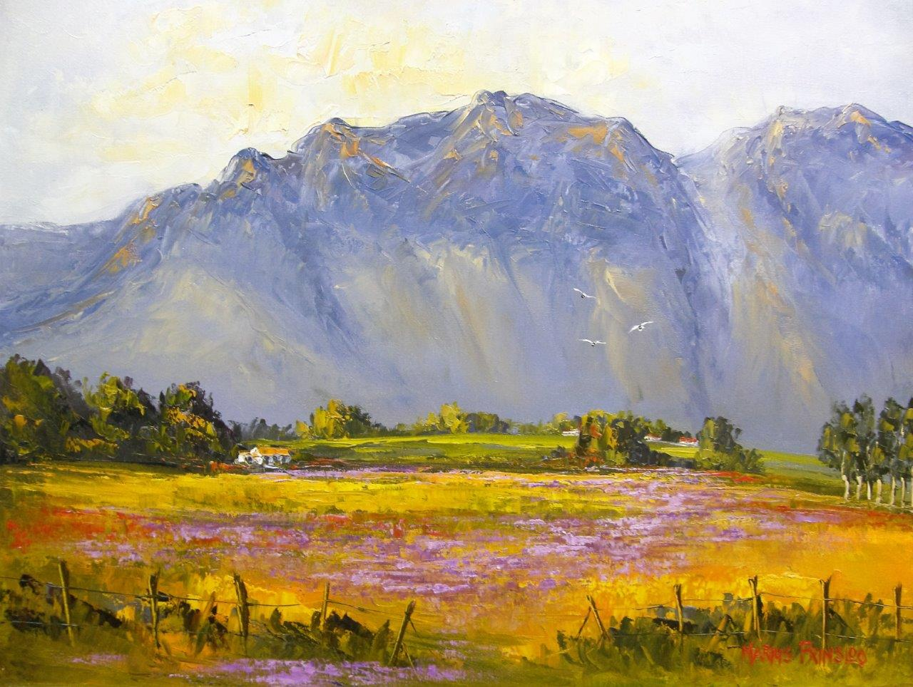 marius prinsloo, marius prinsloo art for sale, marius prinsloo, marius prinsloo art, south african artist, paintings for sale, crouse art gallery